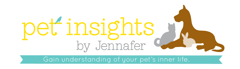 Pet Insights by Jennafer